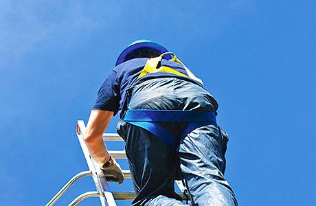 Ladder chiefs welcome guidance