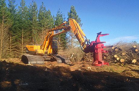TIMBER… Hyundai chosen for tree clearance tasks