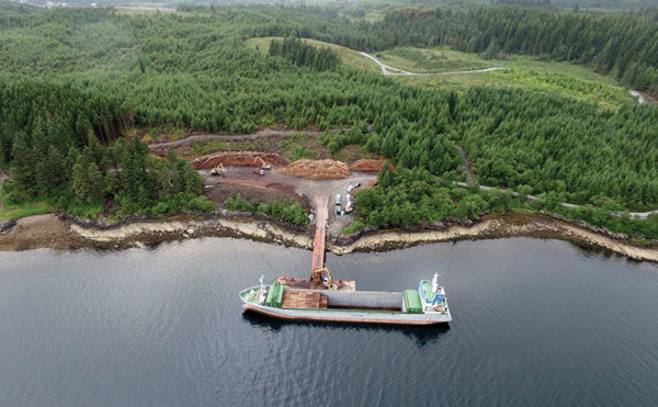 In the dock: Liebherr machines aid floating pier project